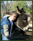 Miniature donkeys and children